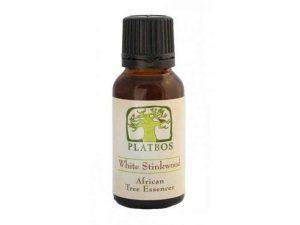 White Stinkwood essence